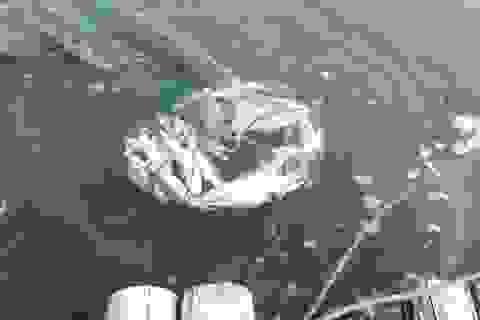 Vụ cá chết trên sông Âm: Nước sông có màu đen đục