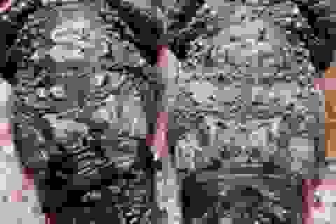 """Phạt người tung tin """"bắt được cá sấu 83 kg"""" 10 triệu đồng"""