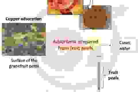 Vỏ các loại cam chanh có thể thay thế cho than hoạt tính