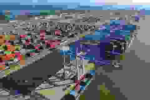 Thủ tướng yêu cầu làm rõ mất 2,4 tỷ USD/năm vì không sử dụng cảng nước sâu
