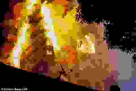 Vụ hỏa hoạn London: Nhân chứng kể khoảnh khắc hứng bé gái bị ném từ tầng 5