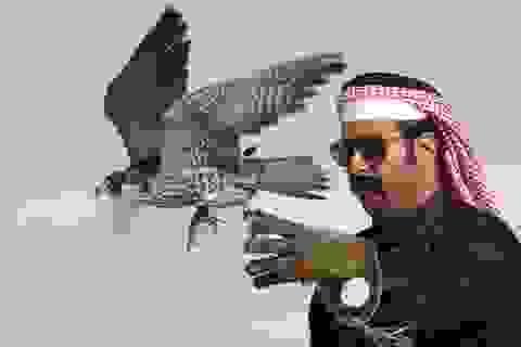 Qatar chi 1 tỷ USD chuộc thành viên Hoàng gia bị bắt cóc?