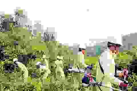 Đẩy mạnh ứng dụng KHCN cho dịch vụ điện năng hoàn hảo