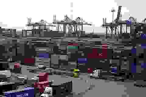 """Phó Thủ tướng yêu cầu làm rõ vụ 213 container bỗng dưng """"biến mất"""""""