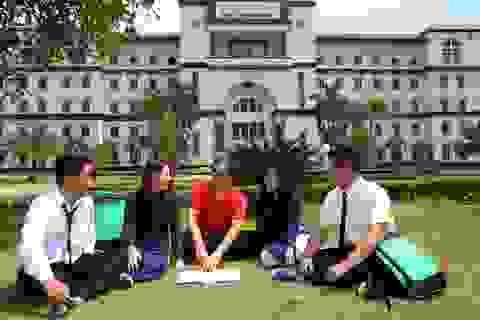 Đại học Tân Tạo đào tạo Ngôn ngữ Anh đậm chất Mỹ