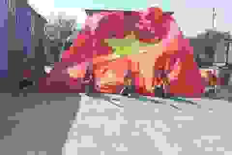 CĐV Việt Nam mang đại kỳ tiếp lửa thầy trò HLV Hoàng Anh Tuấn ở Hàn Quốc
