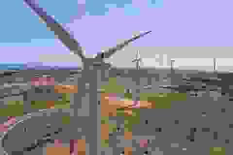 Phát triển năng lượng sạch từ điện gió: Không thể chần chừ nữa