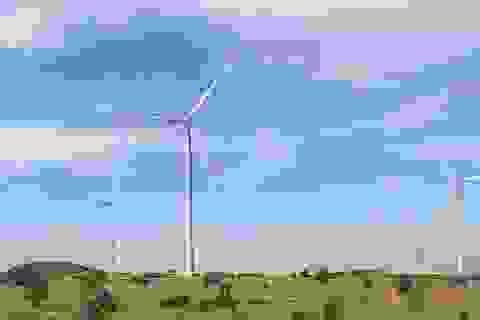 Năm 2050, Việt Nam sẽ xuất khẩu thiết bị điện gió, điện mặt trời ra thế giới