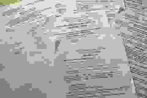 """TP HCM: Doanh nghiệp điêu đứng vì quyết định đình chỉ xét xử phúc thẩm """"bất thường""""!"""