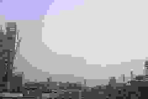 Thanh Hóa: Hơn 1.000 doanh nghiệp nợ đọng BHXH của người lao động