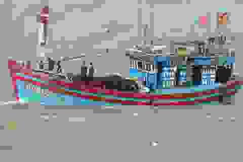 Cứu thành công 17 thuyền viên trôi dạt trên biển
