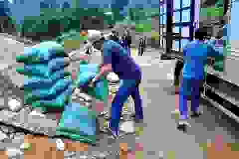 Quảng Nam phân bổ 500 tấn gạo cho người dân vùng bão lũ