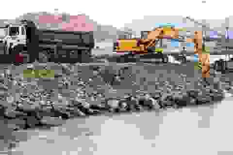 """Quảng Bình: Đã phá dỡ cảng cá """"chui"""" ở Hòn La"""
