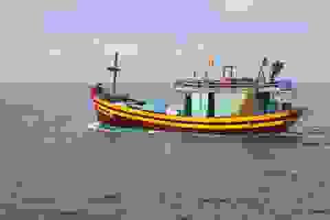 Tìm kiếm ngư dân rơi xuống biển, mất tích trong đêm