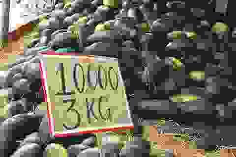 Nông nghiệp Việt: Khuyến nông tốt, sản lượng nhiều nhưng không biết bán ở đâu!