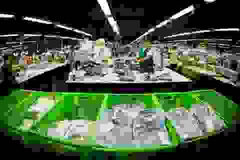 Thu hút FDI - thách thức lớn nhất năm 2017 của kinh tế Việt Nam