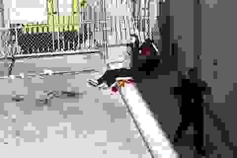 Xả súng tại sân bay Mỹ, ít nhất 5 người chết