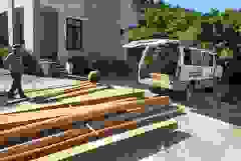 Chở gỗ lậu bị phát hiện, tài xế bỏ xe chạy thoát thân