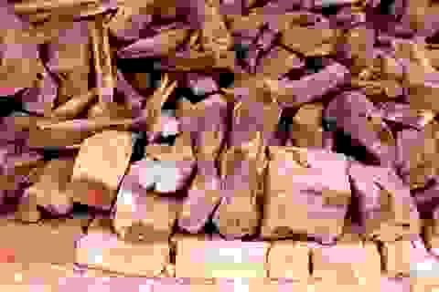Về Bắc Ninh xem khu chợ gỗ quý tiền tỉ bán theo cân