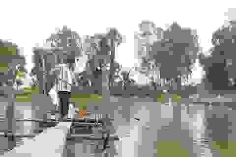 Nông dân nuôi cá tra trong chuỗi liên kết lo mất nhà… vì ngân hàng siết nợ