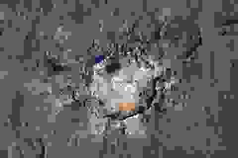 Tiết lộ bằng chứng hoạt động của sinh vật ngoài hành tinh trên hành tinh lùn Ceres