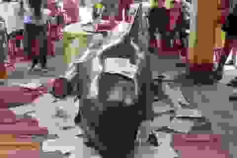 5 ngày, 2 con cá voi lụy vào bờ biển Quảng Ngãi