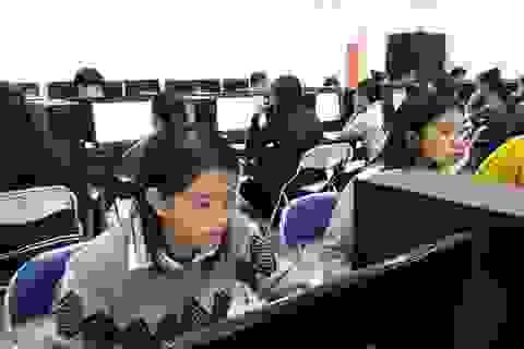 Thi tuyển giáo viên Quảng Ngãi: 90,3% thí sinh vượt qua vòng 1