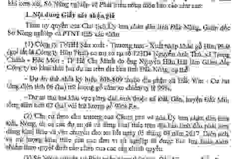 Giả chữ ký giám đốc Sở, âm mưu khai thác lậu gỗ rừng