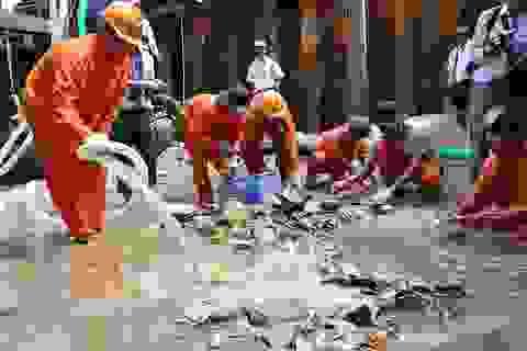 Quảng Ngãi: Khai quật khẩn cấp tàu cổ tại vùng biển huyện Bình Sơn