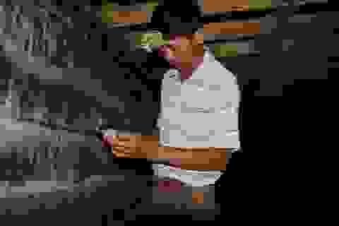 Lão nông khởi nghiệp từ chim quý, thu tiền tỷ mỗi năm