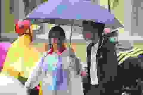 TPHCM: Thông báo hỏa tốc cho học sinh, sinh viên nghỉ học tránh bão