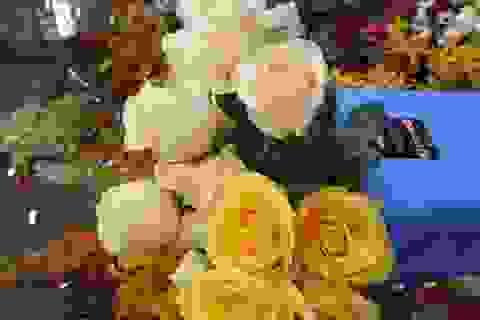 """Hoa ngày Valentine: """"Chết mê, chết mệt"""" với hồng Ecuador, Tulip Hà Lan"""