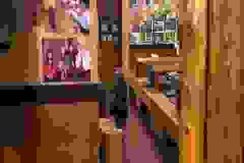 Khỉ làm việc như người ở nhà hàng Nhật Bản