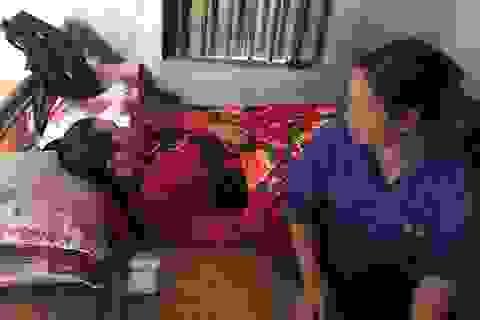 Hơn 50 triệu đồng đến với người phụ nữ chồng mất sớm, con trai bị u não