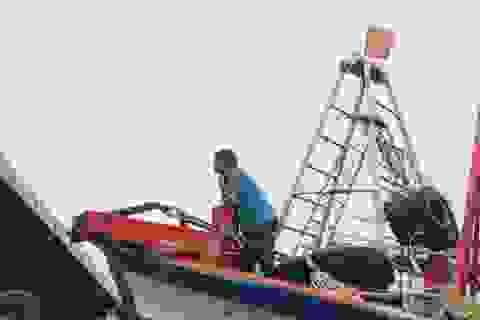 """Áp thấp nhiệt đới """"đe dọa"""", Cà Mau dời ngày tưởng niệm 20 năm bão Linda"""
