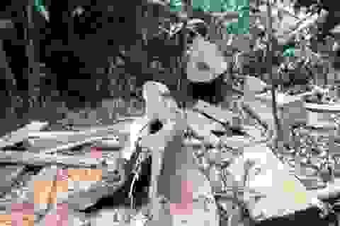 """Tái diễn tình trạng """"xẻ thịt"""" rừng đặc dụng trong VQG Cúc Phương"""