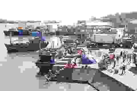 Ngư dân yên tâm vươn khơi sau công bố biển an toàn