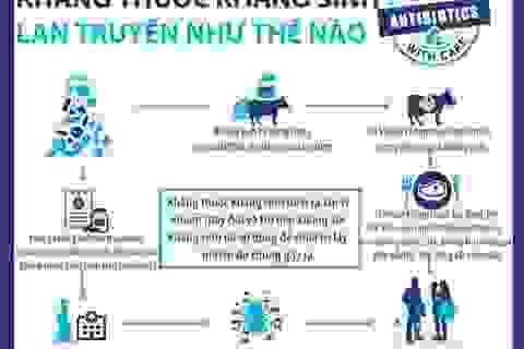 [Inforgraphics]: Kháng kháng sinh lan truyền như thế nào?