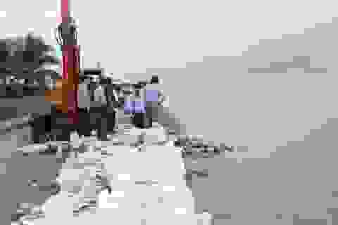 Khảo sát tình hình sạt lở kè đê biển Bạc Liêu