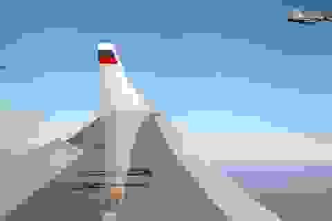 Cảnh báo sức mạnh của không quân tầm xa Nga