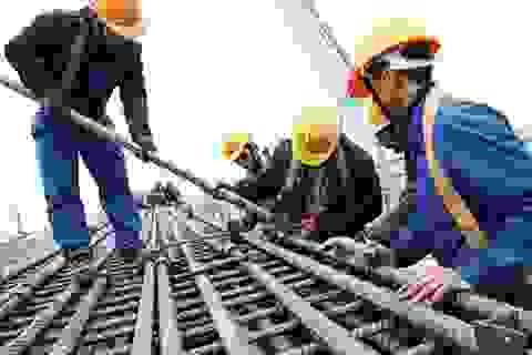 36,1 % người lao động muốn làm thêm để đủ sống chứ phải không làm giàu