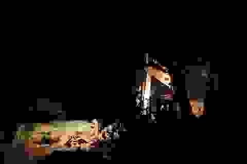 """Chủ tịch tỉnh Bình Định yêu cầu xử lý vụ """"đất tặc"""" qua mặt chính quyền, hoành hành trong đêm"""