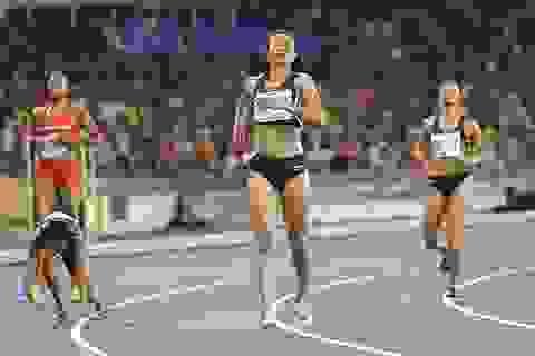 Tú Chinh, Ánh Viên cạnh tranh danh hiệu Vận động viên tiêu biểu 2017
