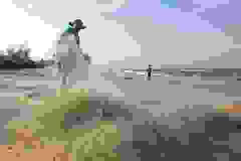Ngư dân phấn khởi trúng lộc biển đầu năm