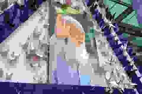 """Chia sẻ xúc động của học sinh về """"20/11 vắng thầy Văn Như Cương"""""""