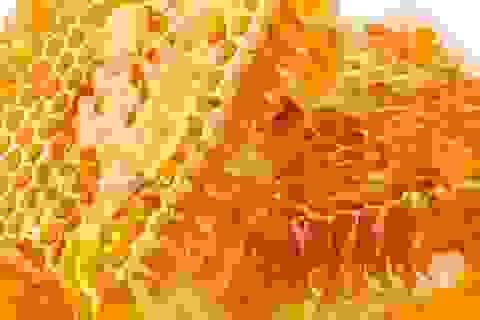 Thực hư chuyện 75% mật ong nhiễm thuốc trừ sâu