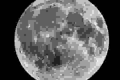 Chúng ta sắp tìm ra bằng chứng về sự sống trên Mặt Trăng?