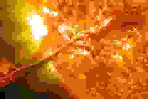Ảnh của NASA cho thấy có UFO trên bề mặt Mặt trời