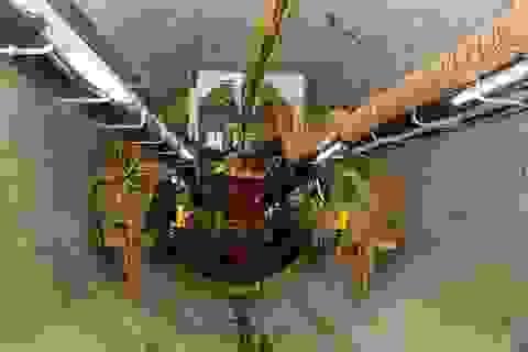 Robot đã khoan hơn một nửa đoạn ngầm tuyến metro số 1