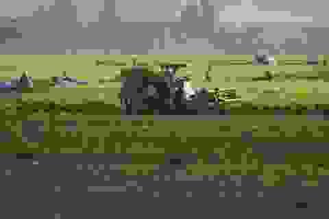 Bắt các đối tượng thu tiền bảo kê của chủ máy gặt  lúa